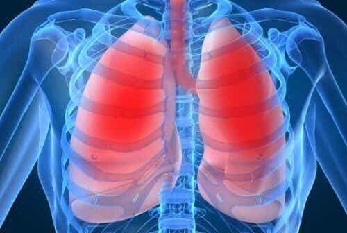 Płuca - 10 najczęstszych sygnałów ostrzegawczych