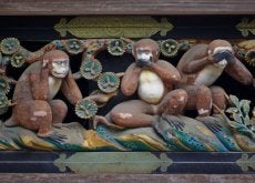 Pomnik małpek