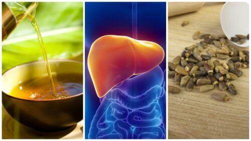 stłuszczenie wątroby naturalne leki