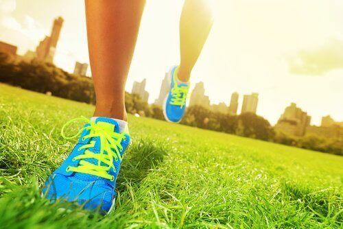 biegacz na trawie