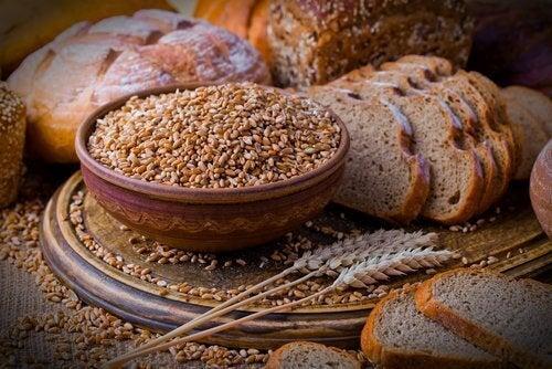 Zboże i chleb