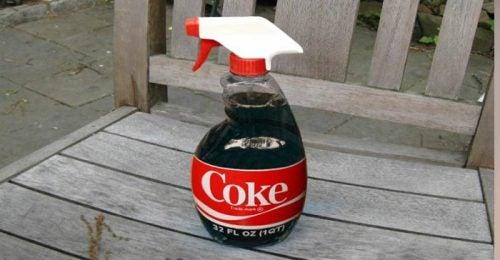 Coca cola w butelce ze spryskiwaczem
