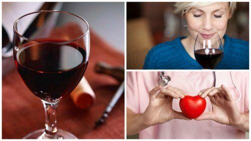 Czerwone wino – 10 powodów, dla których jest zdrowe
