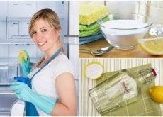 Lodówka - umyj ją i zdezynfekuj