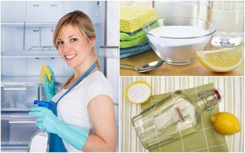 Lodówka - umyj ją i zdezynfekuj domowymi sposobami