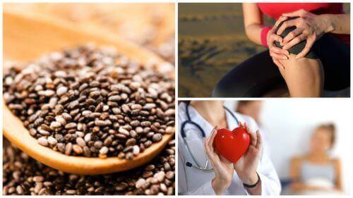 Nasiona chia – 9 niesamowitych korzyści