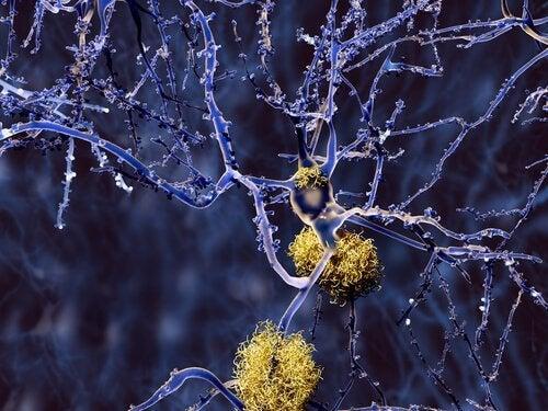 połączenia nerwowe