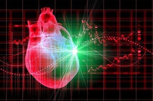 Czerwona kapusta a zdrowie serca