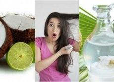 Wypadanie włosów - kuracja wodą kokosową i cytryną