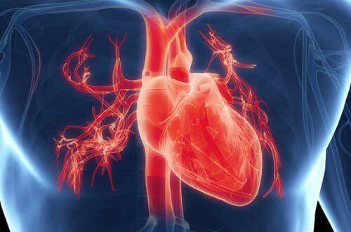 Serce i jego kondycja – 7 objawów, które Cię zaniepokoją
