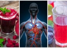 Układ krwionośny - krążenie krwi