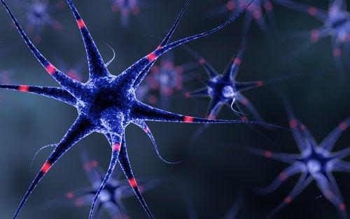 Układ nerwowy – 6 trików, by go wzmocnić