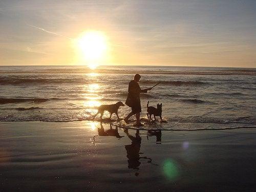Woda morska. Kobieta spaceruje plażą