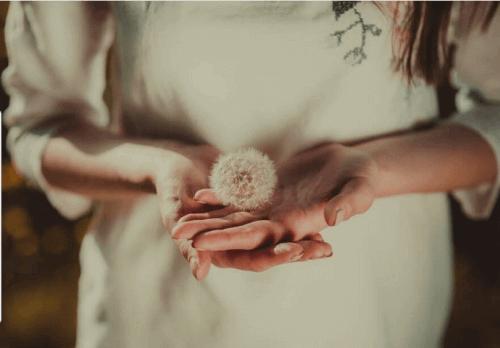 kobieta trzyma w ręku dmuchawce