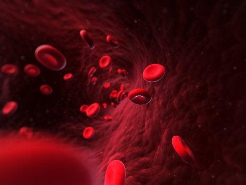 Prawidłowe krążenie krwi – jak o nie zadbać