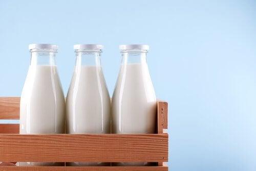 Mleko błędy żywieniowe