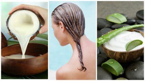 Wypadanie włosów z aloesem i mleczkiem kokosowym