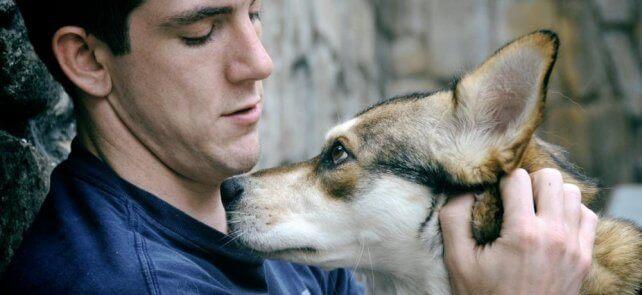 Pies z panem