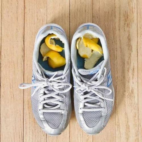 Cytrusy w butach