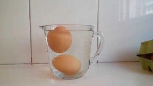 Jajka w szklance