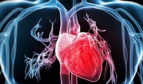 Wzmocnić serce – 9 sposobów, aby to zrobić