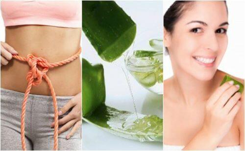 Żel aloesowy – 9 zdrowotnych korzyści ze stosowania