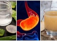kwasy żołądkowe
