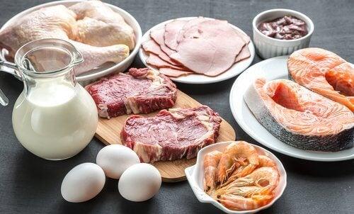 Mięso i produkty nabiałowe