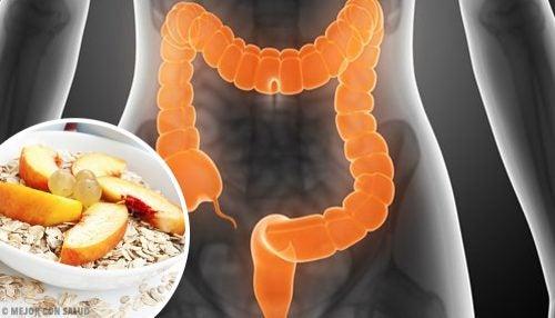 Zespół jelita drażliwego – Co jeść, by złagodzić objawy?