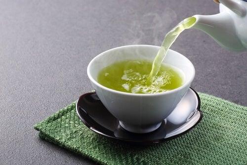 Zielona herbata na regenerację wątroby