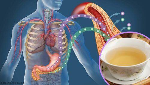Jak obniżyć poziom cukru we krwi dzięki tym 4 herbatom