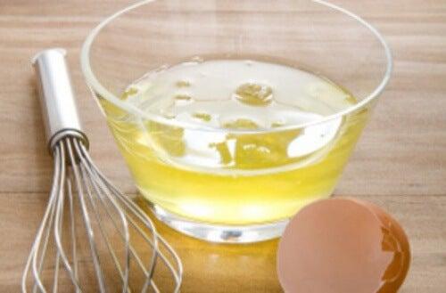 Białko jaja