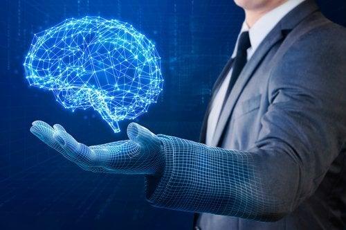 Mózg - projekcja