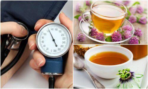 Zioła na nadciśnienie – 5 skutecznych remediów