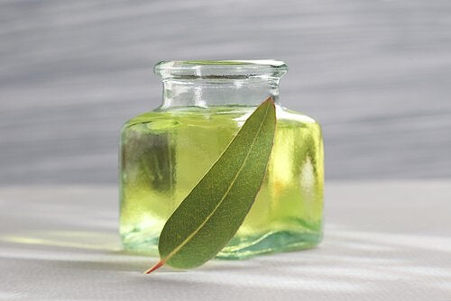 Olejek eukaliptusowy na uciążliwe chrapanie