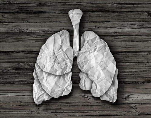 papierowe płuca - zapalenie oskrzeli