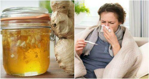 Domowy lek na przeziębienie – syrop z miodu i imbiru