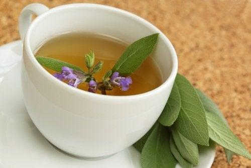 Herbata z szałwii na podrażnione gardło