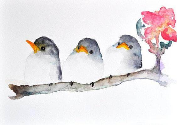 ptaki, synonim empatii