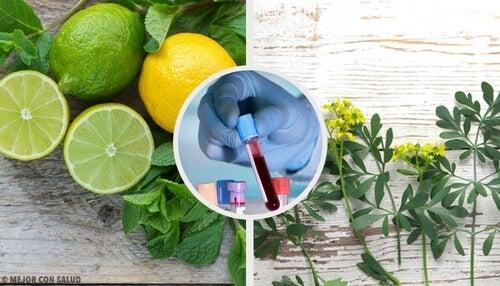 Carrulim – odkryj cudowne remedium oczyszczające krew