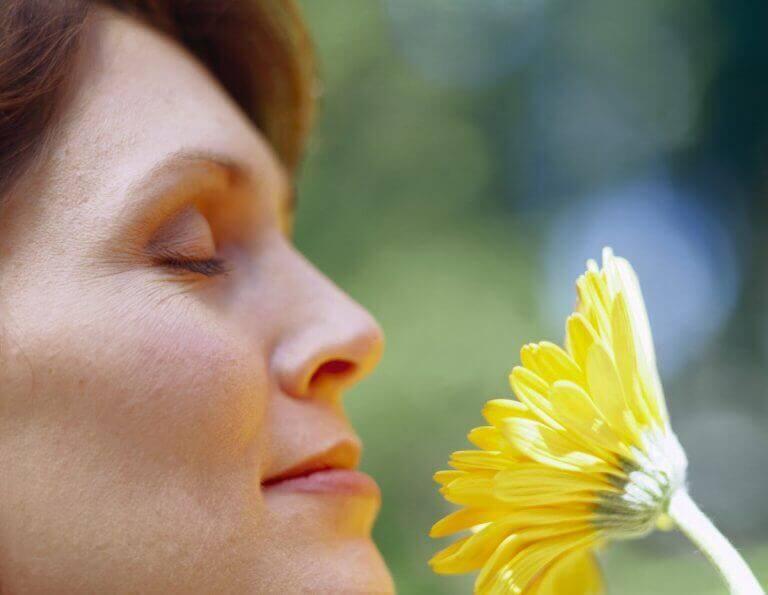 Kobieta wącha rośliny