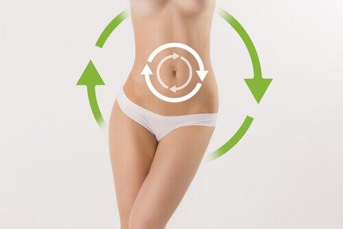Kobiecy brzuch - metabolizm