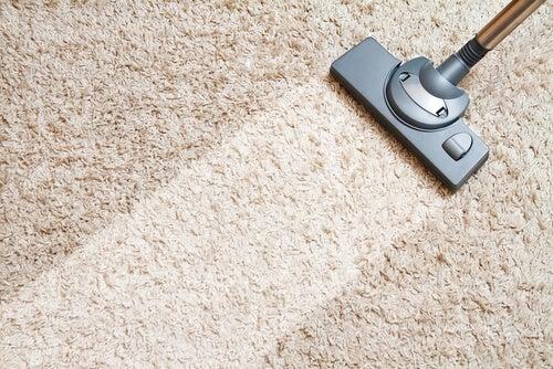 Pranie dywanu pomaga usunąć roztocza