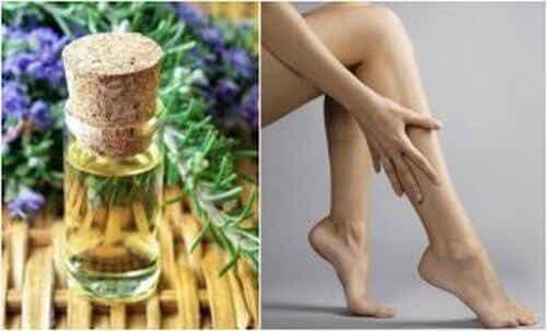 Ujędrniający olejek rozmarynowy dla twoich nóg