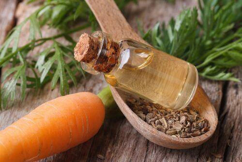 Olej marchewkowy na piękne i zdrowe włosy