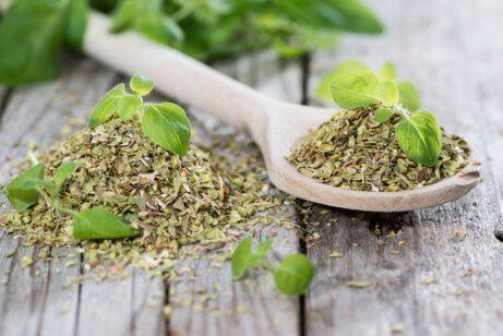 Oregano, herbaty ziołowe