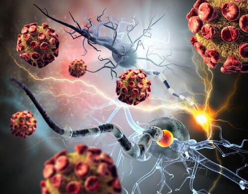 komórki i bakterie