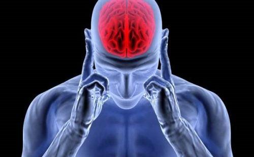 Adrenalina i jej uwalnianie: stymulacja, stres i bóle głowy