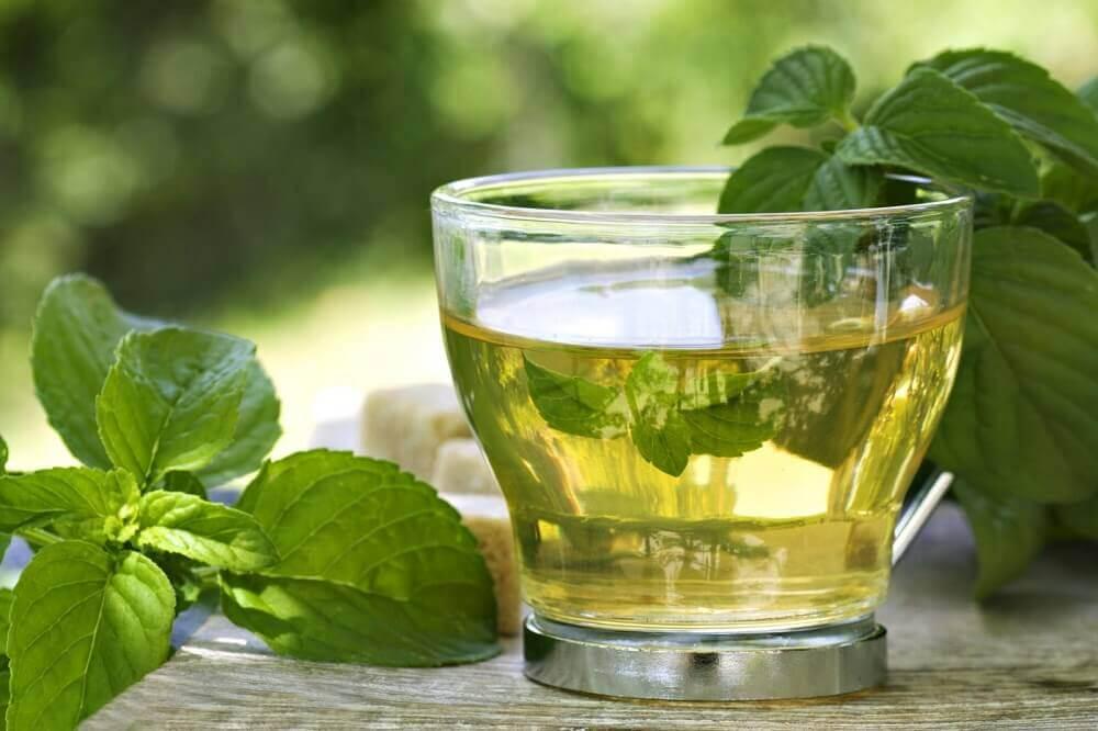 Zielona herbata miętowa
