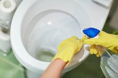 Muszla klozetowa łazienka sprzątanie